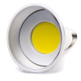 PAR30IP-x9-90: PAR30 LED Bulb, Weatherproof